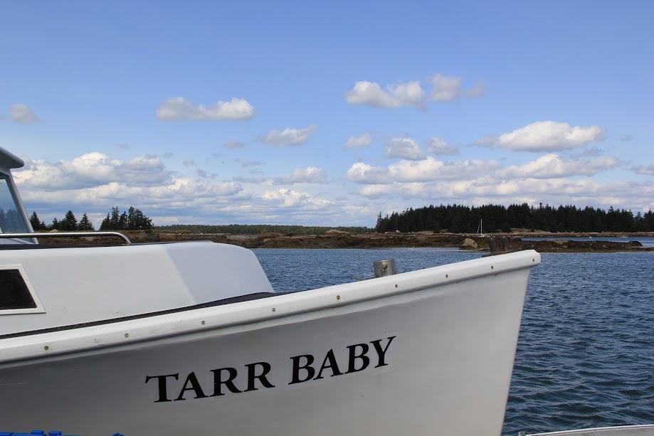 Greenhead Lobster's Captain David Tarr   Fresh Maine Lobster
