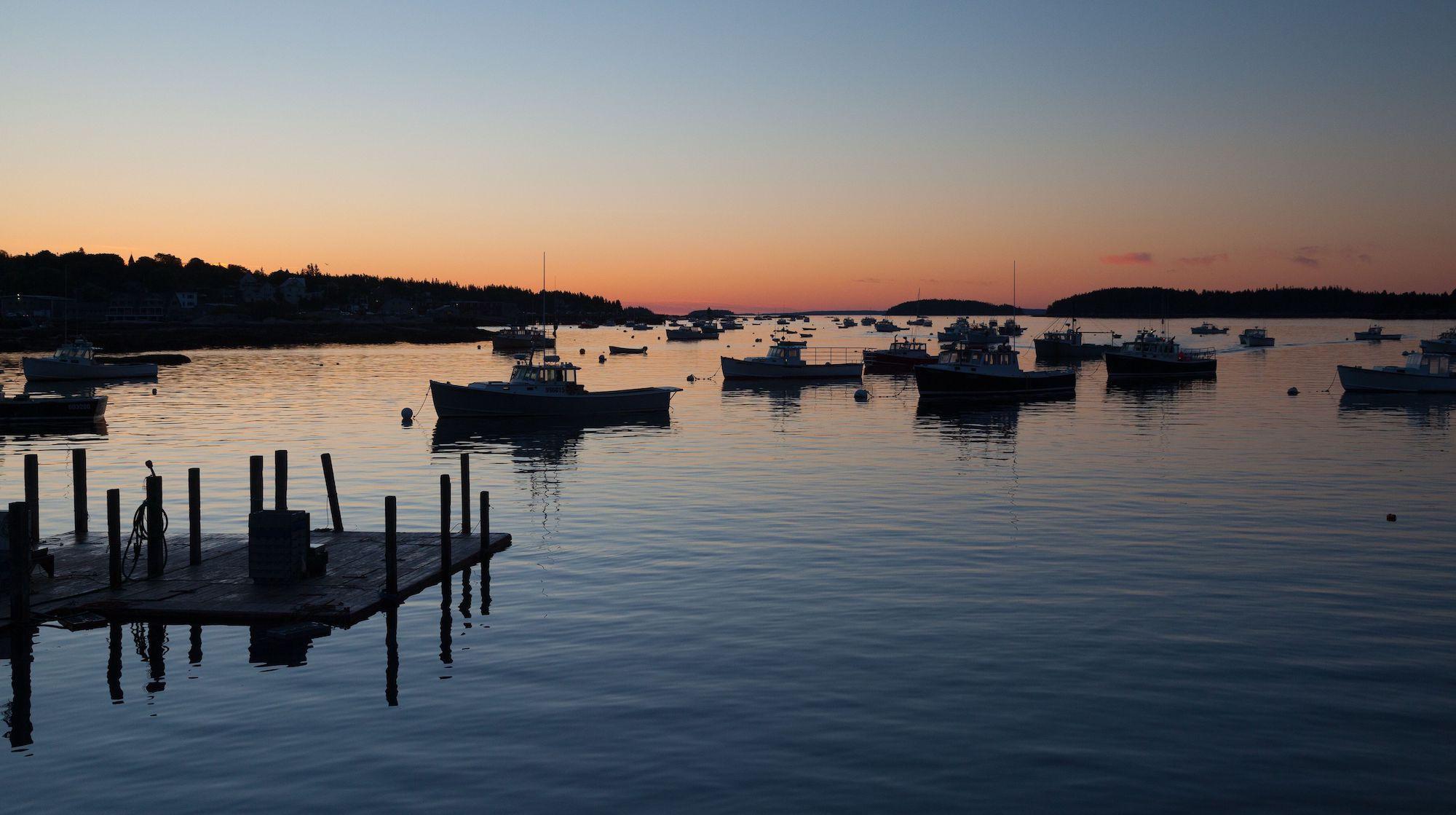 Greenhead Lobster | Order Live Maine Lobster & Lobster ...